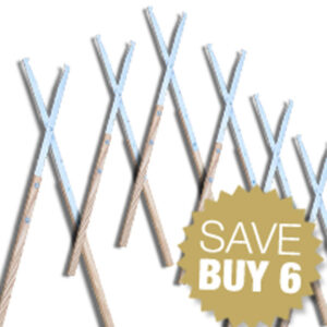 Campfire-Tongs-6-pack